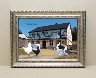 Bauernhof mit tauben gerahmt brbt 100 raumgestaltung for Raumgestaltung aue